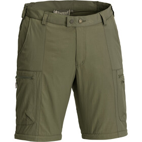 Pinewood Namibia Shorts Men Grün